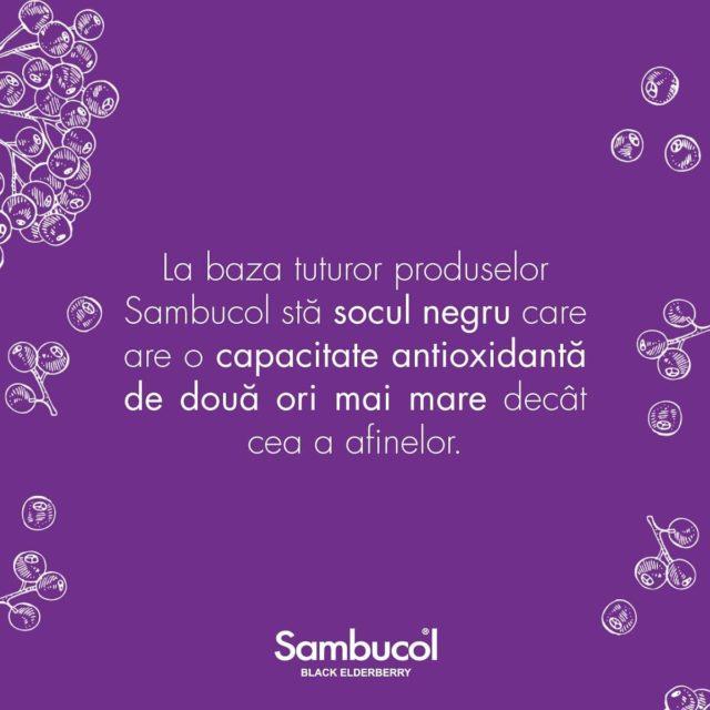 Știați că toate produsele noastre au la bază soc negru? De ce? Pentru că socul negru are o putere antioxidantă dublă decât cea a afinelor sau a merișoarelor, care sunt renumite pentru capacitatea lor de a ajuta la întărirea sistemul imunitar prin neutralizarea efectelor dăunătoare ale radicalilor liberi.  Tu ți-ai luat porția de Sambucol astăzi?  _____ #sambucol #sambucolromania #sambucolro #sistemimunitar #sistemimunitarputernic #imunitate #imunitatecopii #imunitatecrescuta #imunitateafamiliei #socnegru #antioxidanti #natural #romania