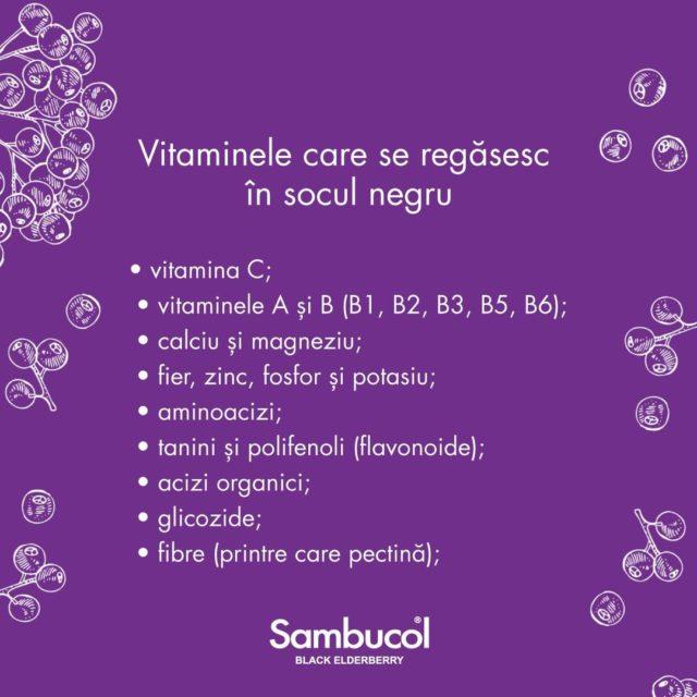 De ce socul negru este un antioxidant atât de puternic? Pentru că în compoziția sa se găsesc o multitudine de vitamine care apără corpul împotriva stresului oxidativ și ne ajută să ne păstrăm imunitatea protejată, indiferent de sezon! 💜 _____ #sambucol #sambucolromania #sambucolro #sistemimunitar #sistemimunitarputernic #imunitate #imunitatecopii #imunitatecrescuta #imunitateafamiliei #natural #socnegru #vitamine #minerale #sanatate #romania