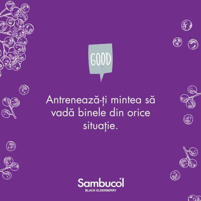 Chiar dacă trecem printr-o perioadă incertă, este important să ne păstrăm pozitivitatea și să vedem părțile bune, să fim alături de cei dragi și să încercăm, pe cât de mult posibil, să avem grijă de ei și de noi. Stay safe! 💜 _____ #sambucol #sambucolromania #sambucolro #sistemimunitar #sistemimunitarputernic #imunitate #imunitatecopii #imunitatecrescuta #imunitateafamiliei #natural #socnegru #vitamine #minerale #sanatate ##românia