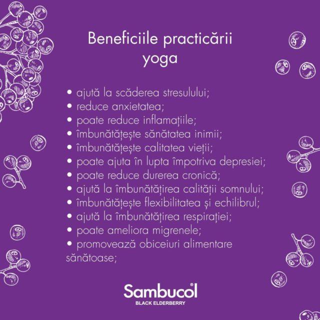 Voi ați încercat yoga până acum? Dacă da, cum vi se pare? Dacă nu, care este motivul pentru care nu ați făcut-o? Așteptăm răspunsurile voastre în comentarii! 💜 _____ #sambucol #sambucolromania #sambucolro #yoga #yogahealth  #sistemimunitar #sistemimunitarputernic #imunitate #imunitatecopii #imunitatecrescuta #imunitateafamiliei #socnegru #natural #antioxidanti #antioxidantinaturali #romania