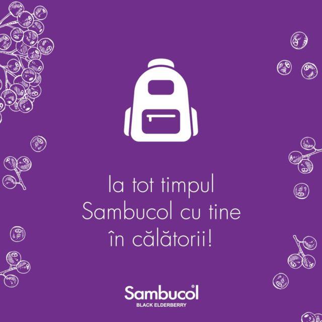 """Începe, în curând, sezonul călătoriilor! Știi care este aliatul tău și al familiei tale cel mai de preț, oriunde v-ați planificat vacanța? Sambucol, bineînțeles! 💜 Protejează-ți întreaga familie de orice """"neplăceri"""" care pot apărea pe parcursul călătoriilor! 🌞#sambucol #sambucolromania #sambucolro #sistemimunitar #sistemimunitarputernic #imunitate #imunitatecopii #imunitatecrescuta #imunitateafamiliei #socnegru #antioxidanti #natural #vitaminac #zinc #antioxidantinaturali #romania"""