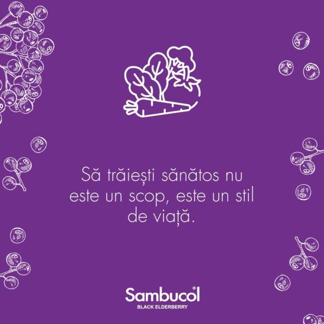 """Nu există scurtături și nu există """"sănătos"""" pentru o perioadă delimitată de timp! 📅🥑 Alimentația este unul dintre cei mai importanți factori din viețile noastre. Îi spunem cu toții simplu """"un stil de viață sănătos sau echilibrat"""" tocmai pentru că trebuie să facă parte din rutina noastră zilnică.#sambucol #sambucolromania #sambucolro #sistemimunitar #sistemimunitarputernic #imunitate #imunitatecopii #imunitatecrescuta #imunitateafamiliei #socnegru #antioxidanti #natural #vitaminac #zinc #antioxidantinaturali #mamasicopilul #mamasibebe #copiisimamici #copiisanatosi #copiifericiti #mama #copiisimamici #motivatie #rabdare #incredere #manancabine #famiscare #hidrateaza_te #stildeviata #sanatos"""