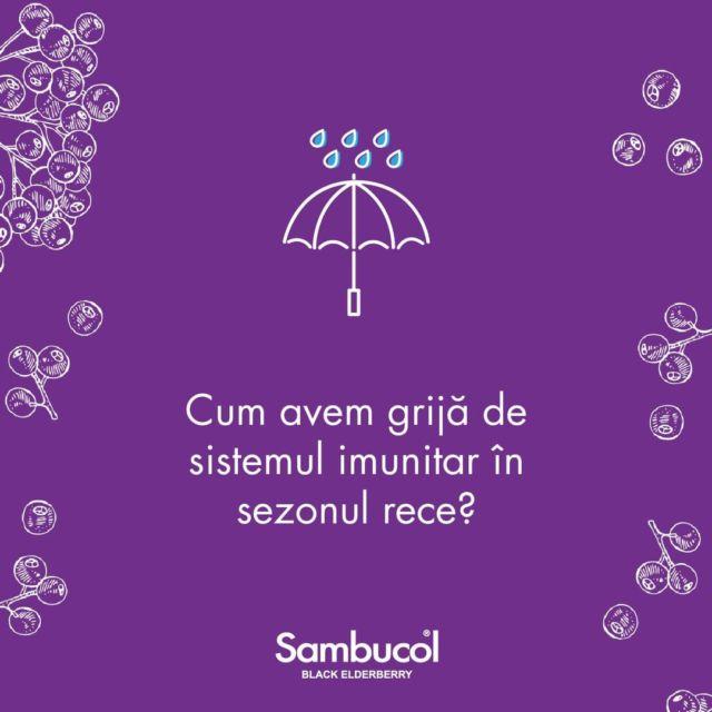 Cum ai grijă de sistemul imunitar al întregii familii în #sezonulrece? Alimentația sănătoasă și echilibrată, un minim de 7 ore de #somn pe zi și eliminarea stresului prin #sport sunt cele mai bune modalități prin care îți poți ajuta sistemul imunitar să fie mai #puternic. La toate acestea, adaugă o doză de Sambucol și bucură-te de siguranță zilnică.#sambucol #sambucolro #imunitate #natural #socnegru #immunoforte #imunitatecrescuta #imunitateafamiliei #staredebine #imunitatecopii #copii #copiisimamici #odihna #alimentatie #vitamine #stres #romania
